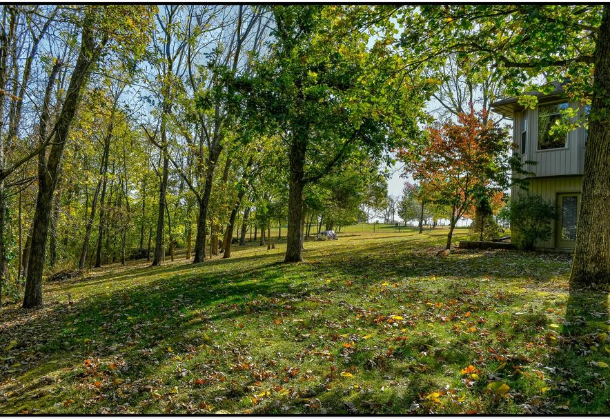 4384 West Routh Lane Willard, MO 65781 - Photo 36