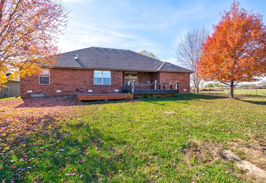 1605 East New Madrid Republic, MO 65738 - Photo 22