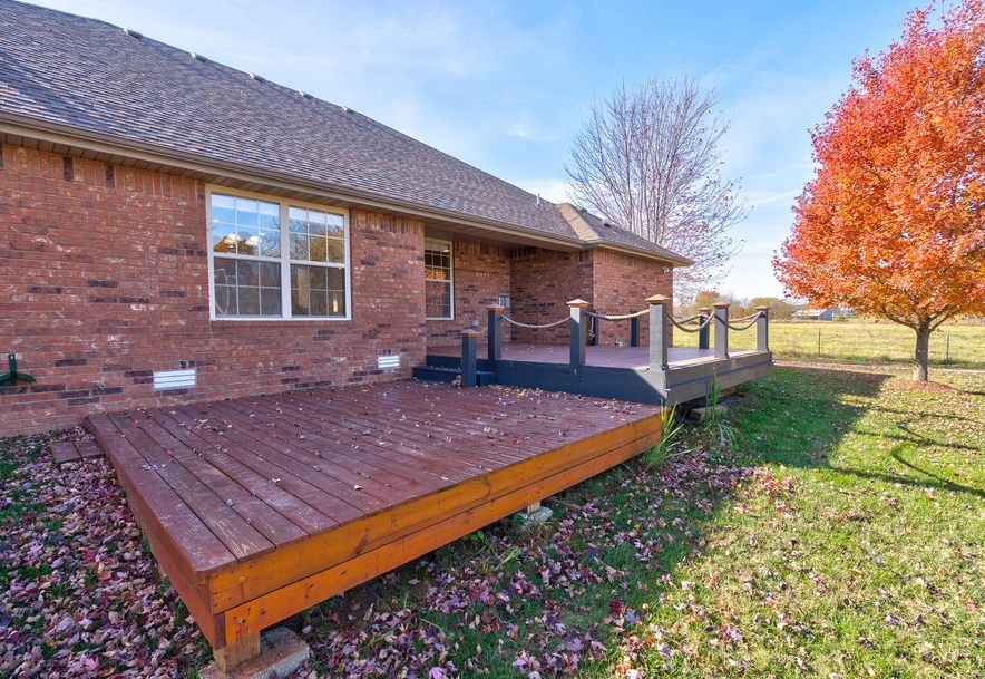 1605 East New Madrid Republic, MO 65738 - Photo 23
