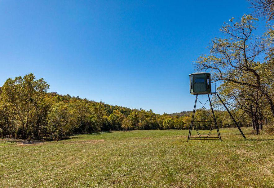 4184 Round Mountain Road Walnut Shade, MO 65771 - Photo 59