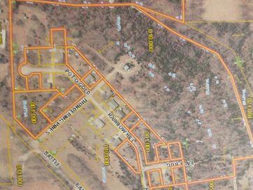 30 Ladybug Lane Reeds Spring, MO 65737 - Image