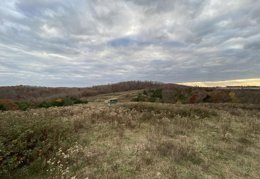 4499 Gravel Point Road Mountain Grove, MO 65711 - Photo 9
