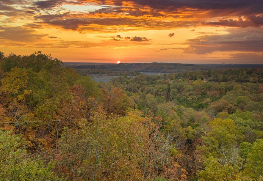 155 White Rockbluff Drive Reeds Spring, MO 65737 - Photo 35