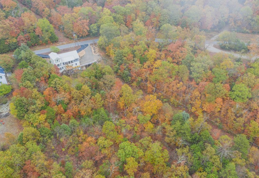 155 White Rockbluff Drive Reeds Spring, MO 65737 - Photo 46