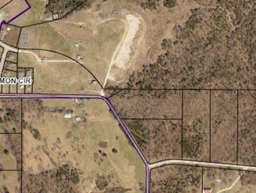 265 Tall Timber Circle Forsyth, MO 65653 - Image 1