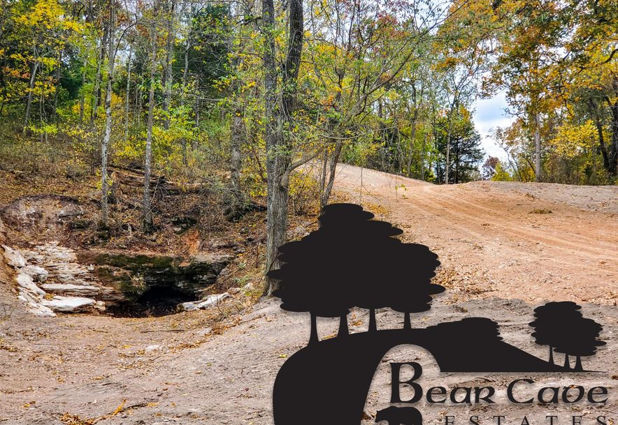 Lot 5 Bear Cave Estates Marionville, MO 65705 - Photo 1