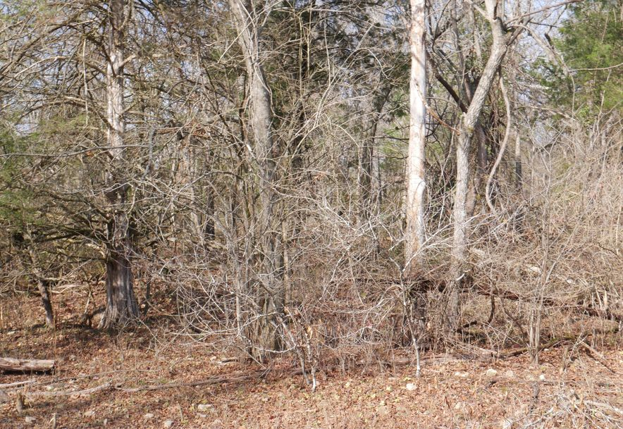 Lot 5 Bear Cave Estates Marionville, MO 65705 - Photo 3