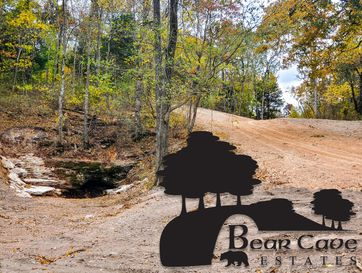 Lot 6 Bear Cave Estates Marionville, MO 65705 - Image 1