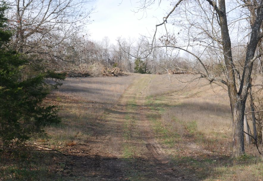 Lot 11 Bear Cave Estates Marionville, MO 65705 - Photo 5
