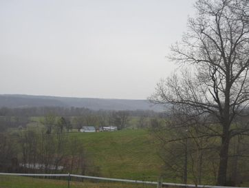 6530 Turkey Trail Hartville, MO 65667 - Image 1
