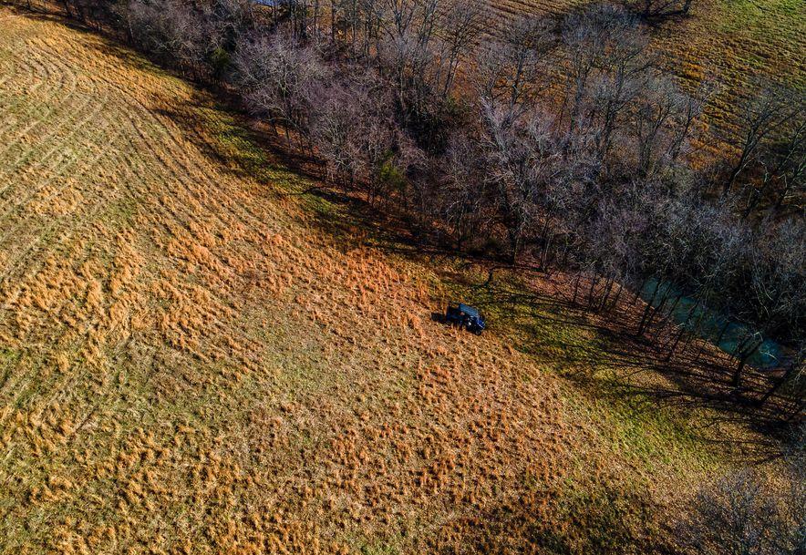 1012 Dogwood Tree Road Reeds Spring, MO 65737 - Photo 15