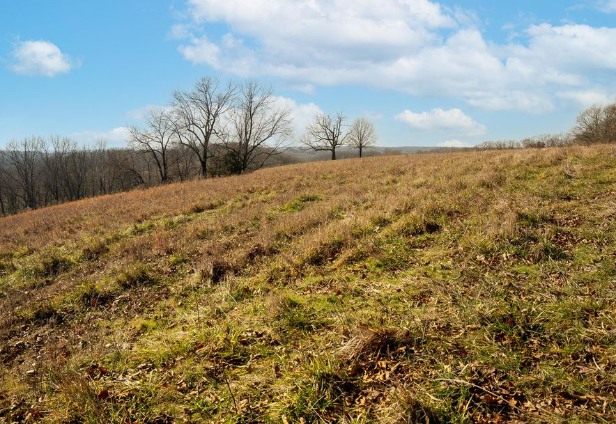 1012 Dogwood Tree Road Reeds Spring, MO 65737 - Photo 16