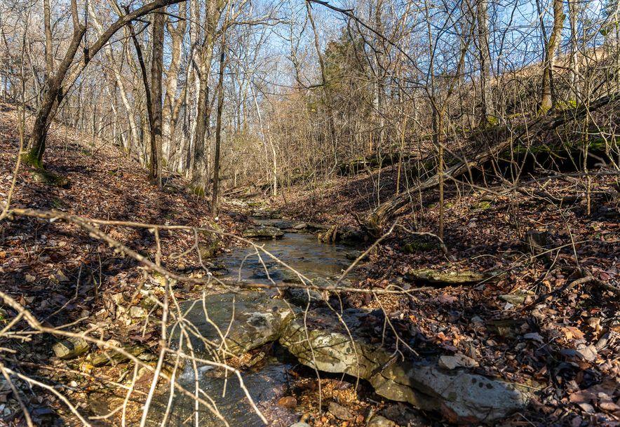 1012 Dogwood Tree Road Reeds Spring, MO 65737 - Photo 17