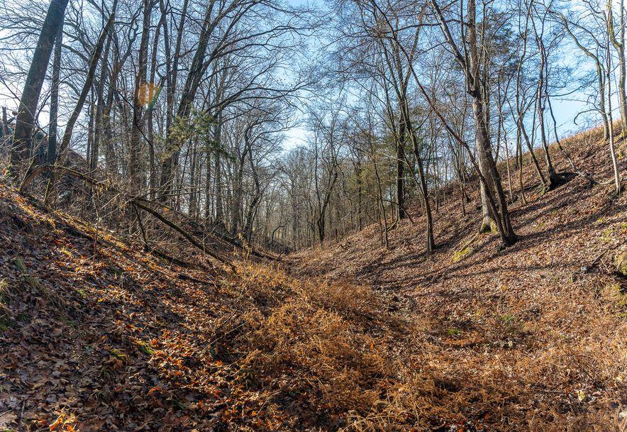 1012 Dogwood Tree Road Reeds Spring, MO 65737 - Photo 18