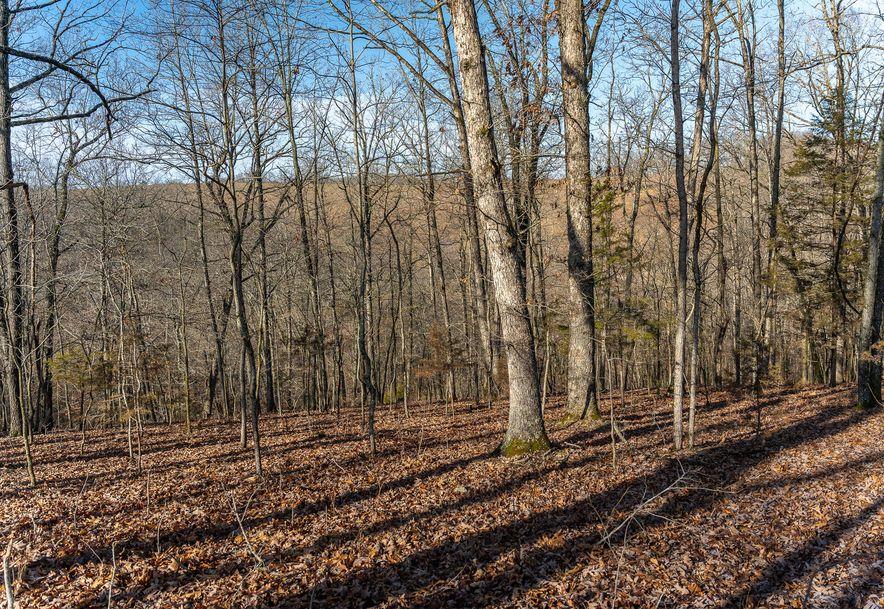 1012 Dogwood Tree Road Reeds Spring, MO 65737 - Photo 20