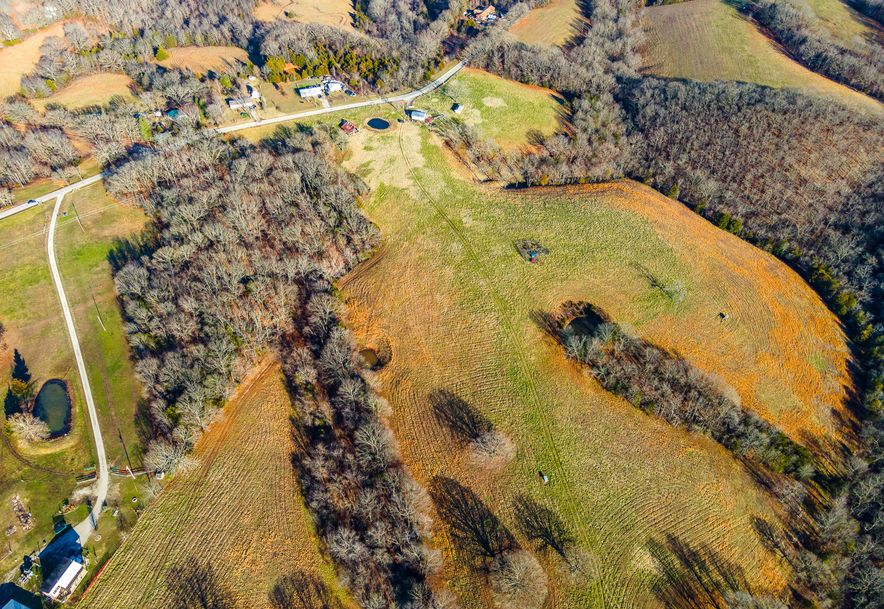 1012 Dogwood Tree Road Reeds Spring, MO 65737 - Photo 21