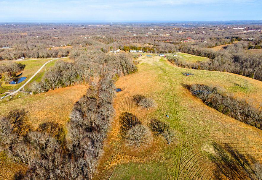 1012 Dogwood Tree Road Reeds Spring, MO 65737 - Photo 24