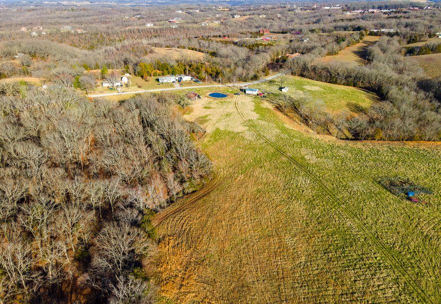 1012 Dogwood Tree Road Reeds Spring, MO 65737 - Photo 31