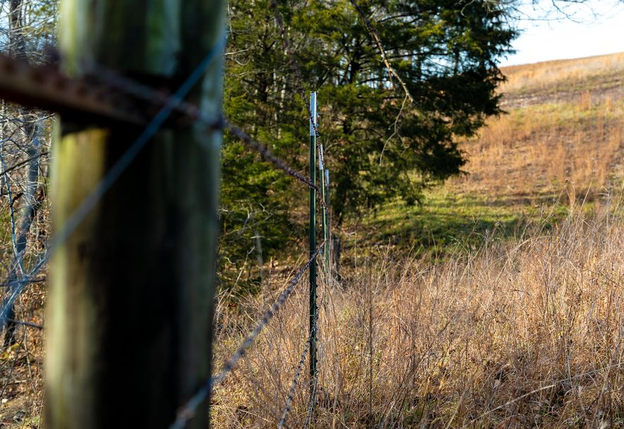 1012 Dogwood Tree Road Reeds Spring, MO 65737 - Photo 5