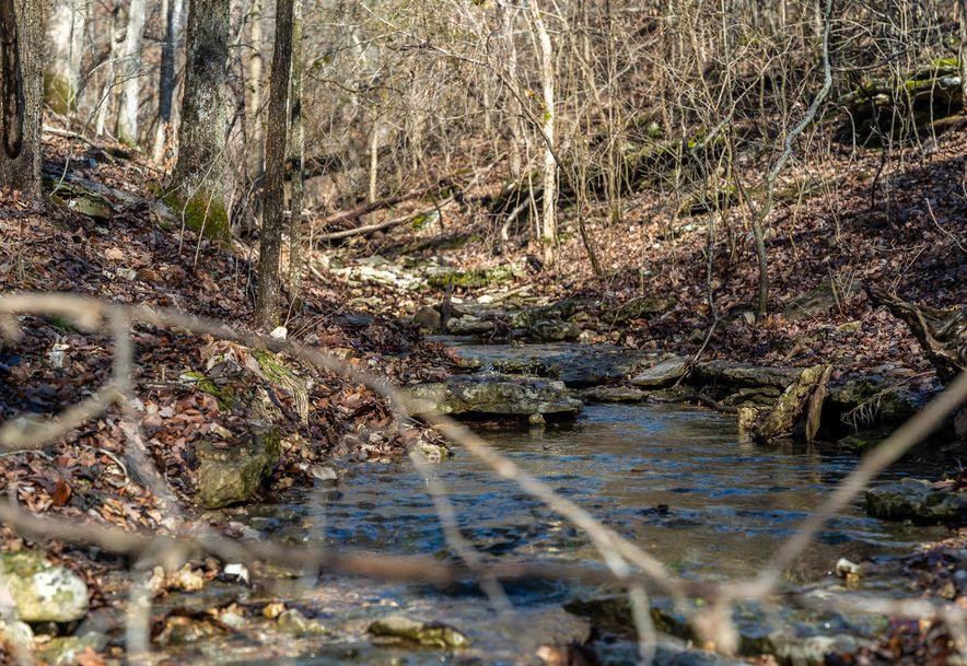 1012 Dogwood Tree Road Reeds Spring, MO 65737 - Photo 7