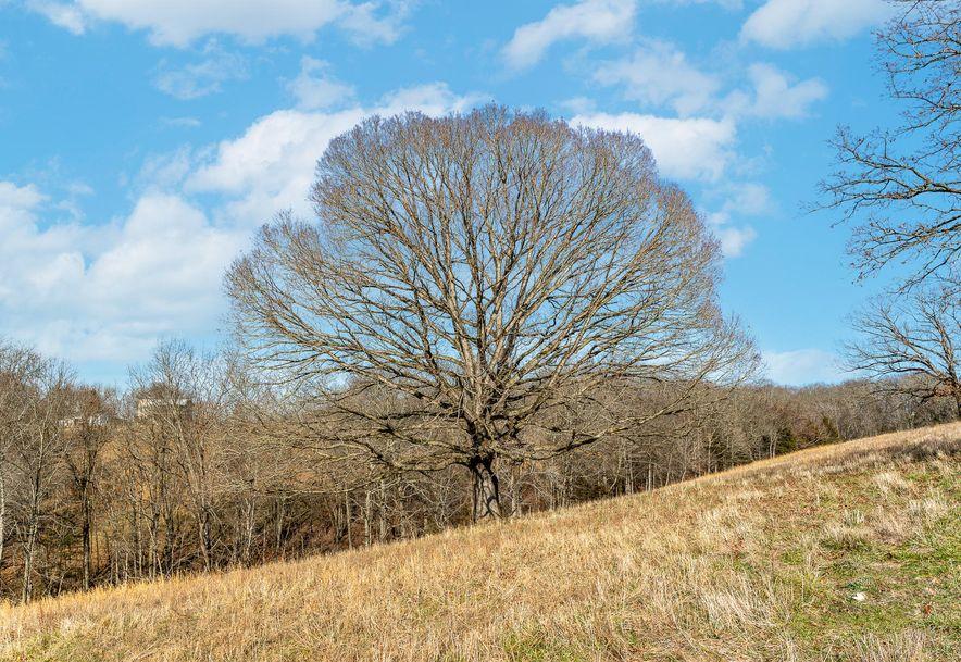 1012 Dogwood Tree Road Reeds Spring, MO 65737 - Photo 9