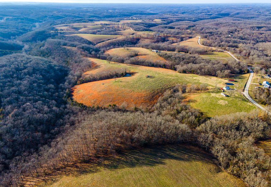 1012 Dogwood Tree Road Reeds Spring, MO 65737 - Photo 10