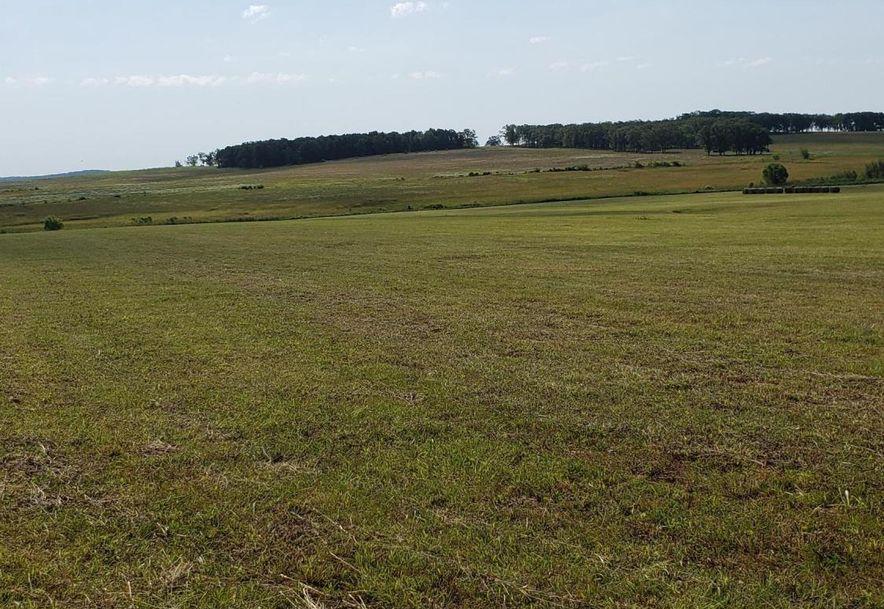 12003 Highway Z Falcon, MO 65470 - Photo 43