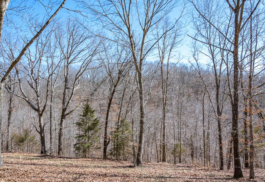 158 Dogwood Lane Highlandville, MO 65669 - Photo 40