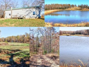 10781 State Hwy Mm Pottersville, MO 65790 - Image 1