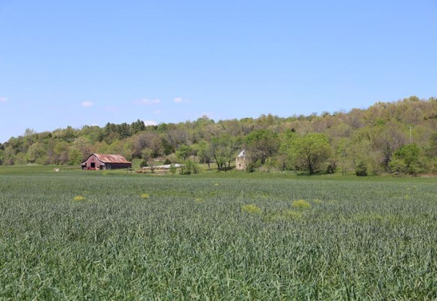 000 County Road Z-850 Thornfield, MO 65762 - Photo 28