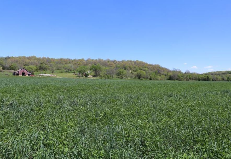 000 County Road Z-850 Thornfield, MO 65762 - Photo 29