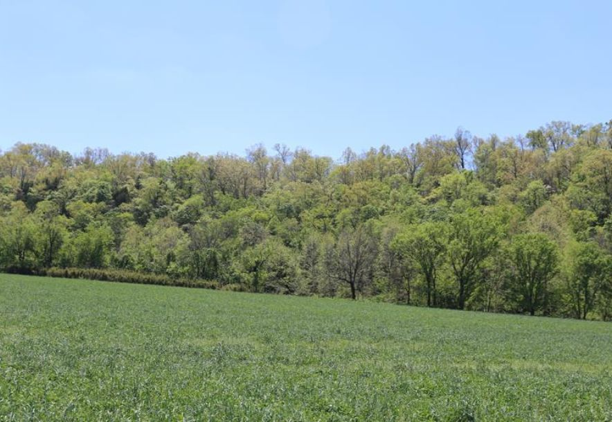 000 County Road Z-850 Thornfield, MO 65762 - Photo 31