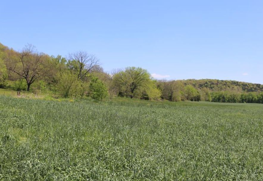 000 County Road Z-850 Thornfield, MO 65762 - Photo 32