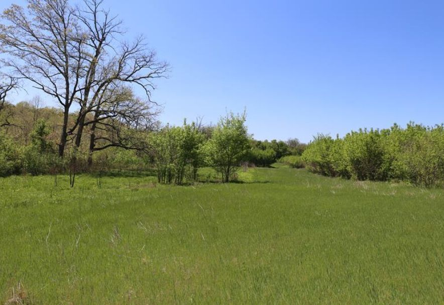000 County Road Z-850 Thornfield, MO 65762 - Photo 34