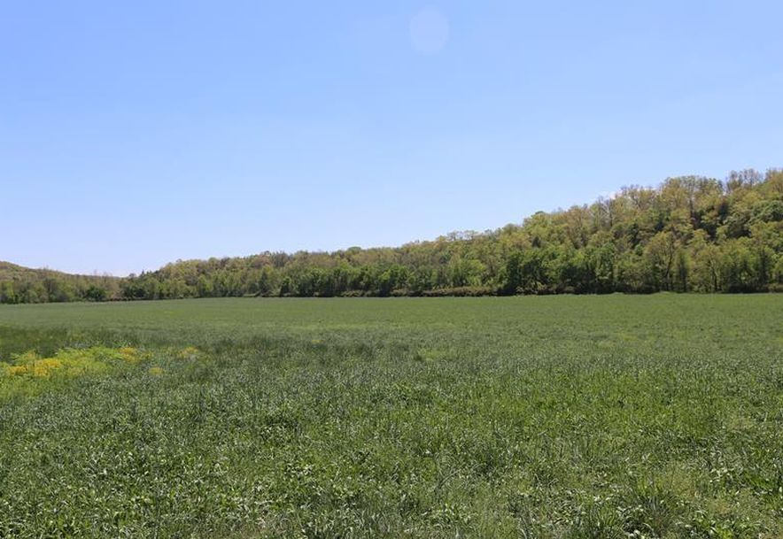 000 County Road Z-850 Thornfield, MO 65762 - Photo 35