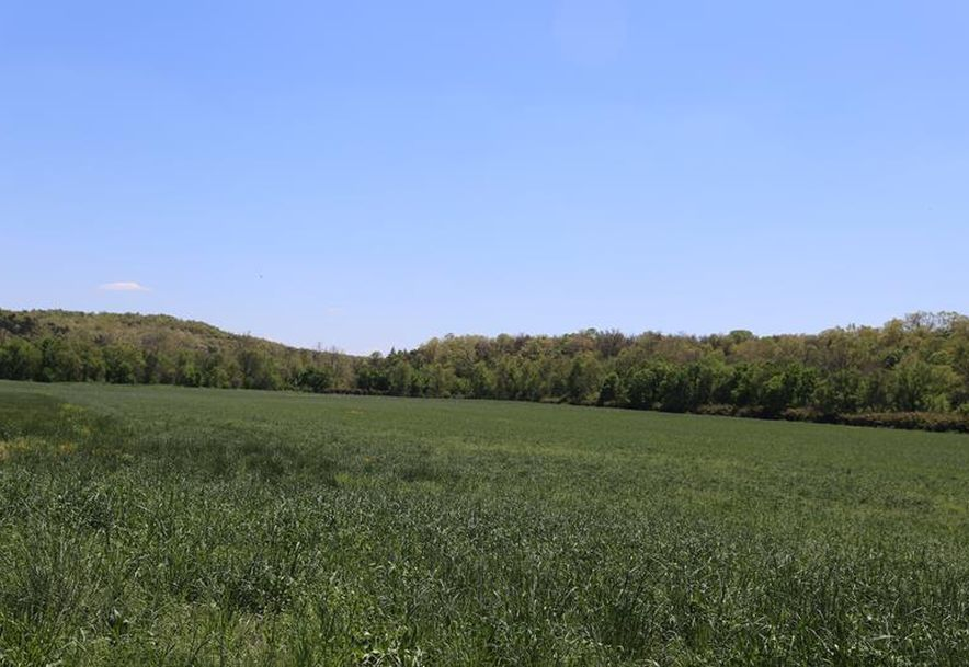 000 County Road Z-850 Thornfield, MO 65762 - Photo 36