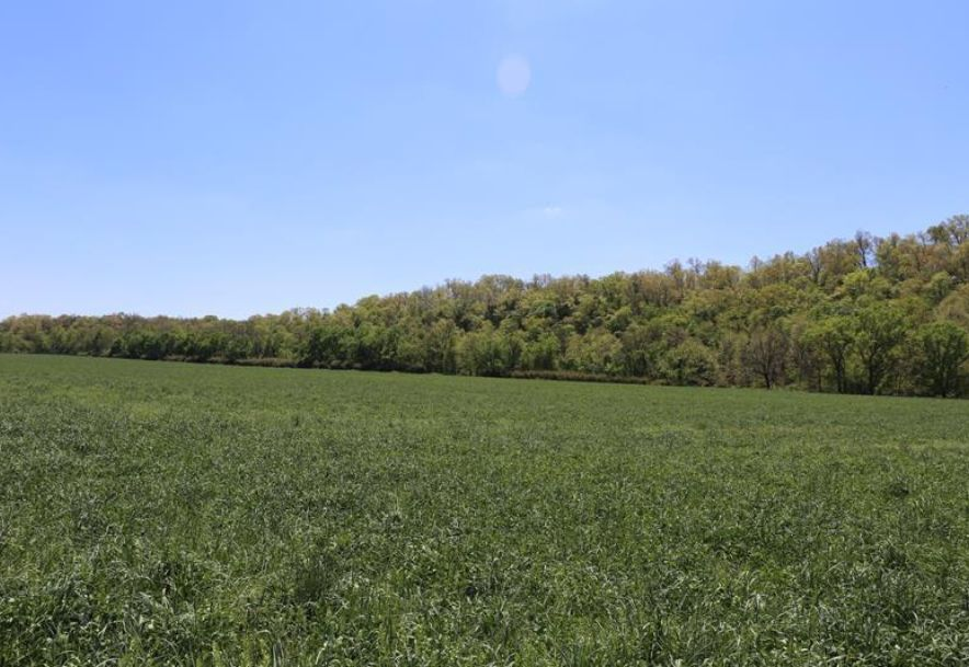 000 County Road Z-850 Thornfield, MO 65762 - Photo 37