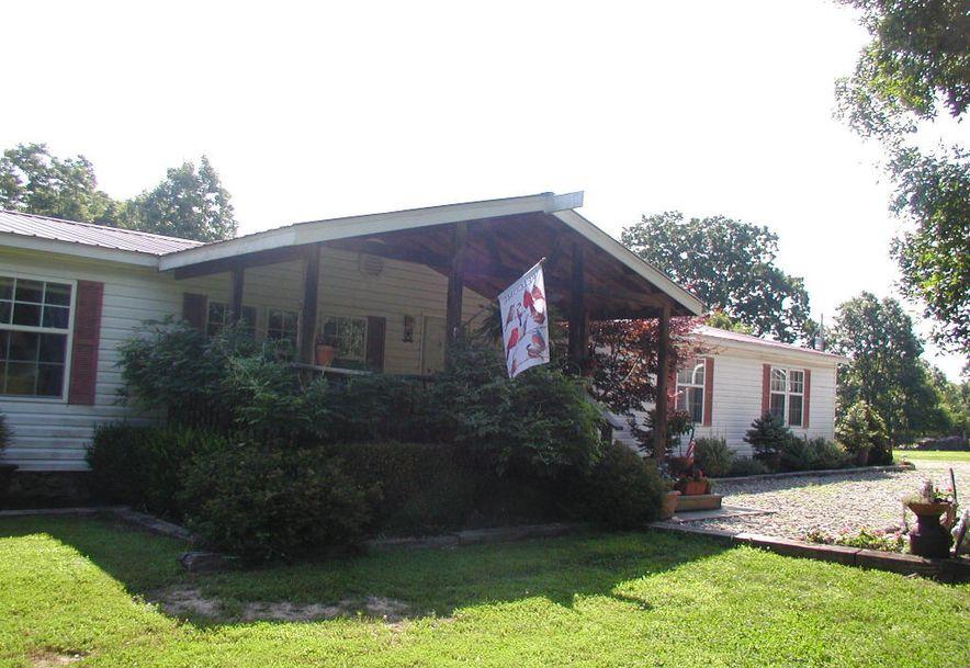30961 County Road 95-V Drury, MO 65638 - Photo 2