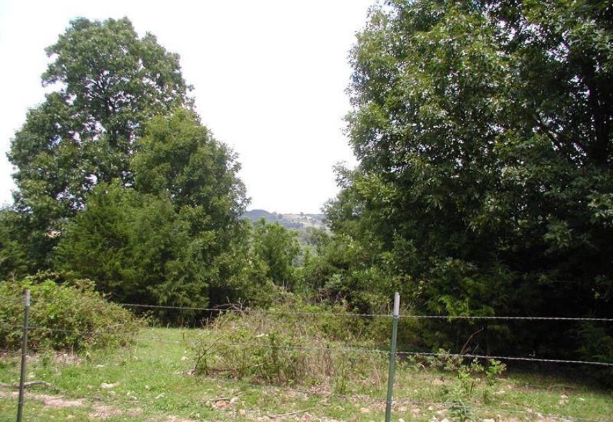 30961 County Road 95-V Drury, MO 65638 - Photo 32