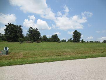 L 53 Robins Nest Hill Mt Vernon, MO 65712 - Image 1