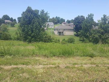 Lot 4 Turtle Creek Marshfield, MO 65706 - Image