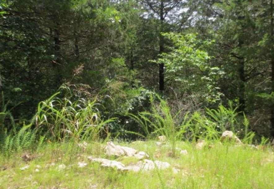 0 Brookside Drive Saddlebrooke, MO 65630 - Photo 18