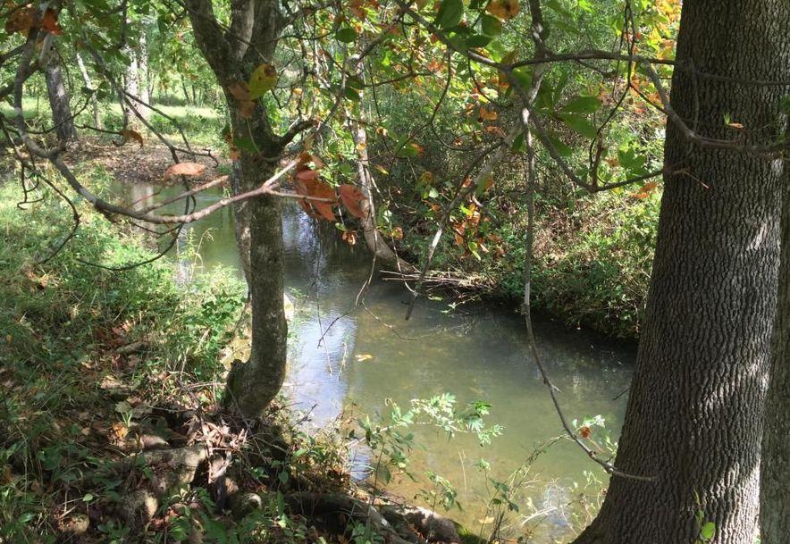 0 Finley Falls Road Seymour, MO 65746 - Photo 23