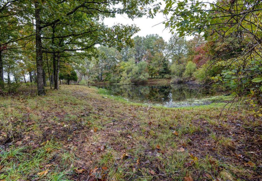 0 Finley Falls Road Seymour, MO 65746 - Photo 37