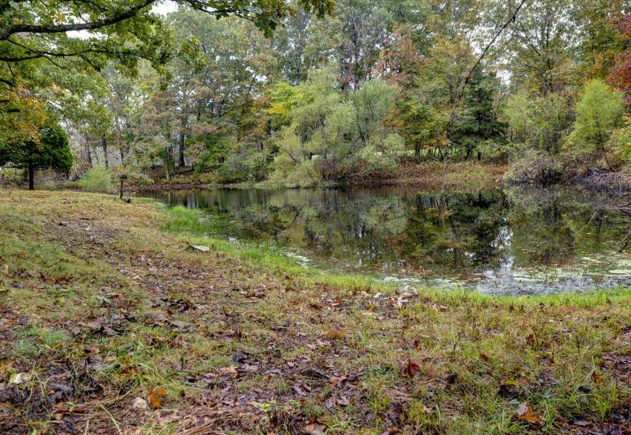 0 Finley Falls Road Seymour, MO 65746 - Photo 38