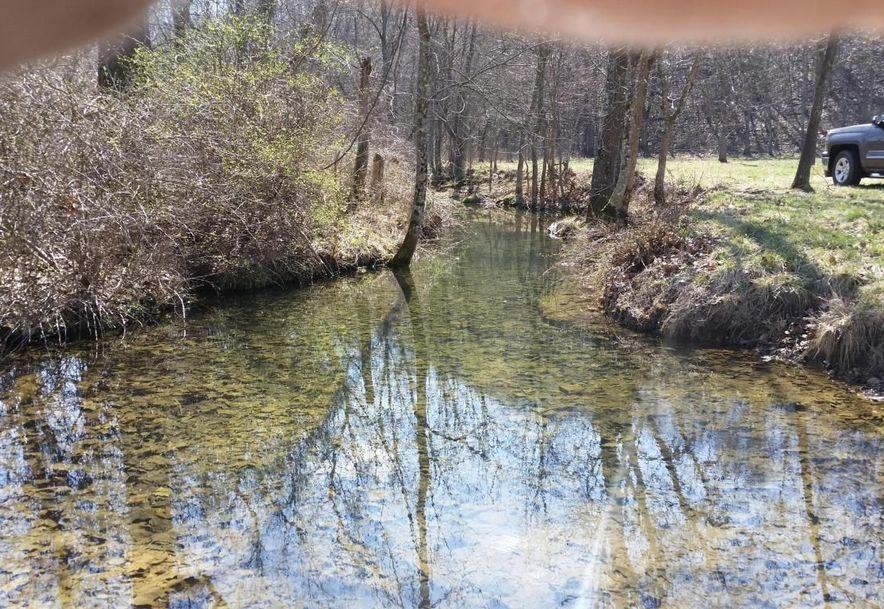 0 Finley Falls Road Seymour, MO 65746 - Photo 65