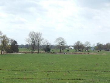 Photo of 1800 Gypsy Flats