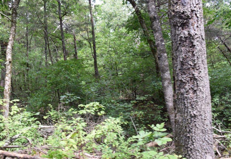 27 Ac Farm Road 2253 Eagle Rock, MO 65641 - Photo 3