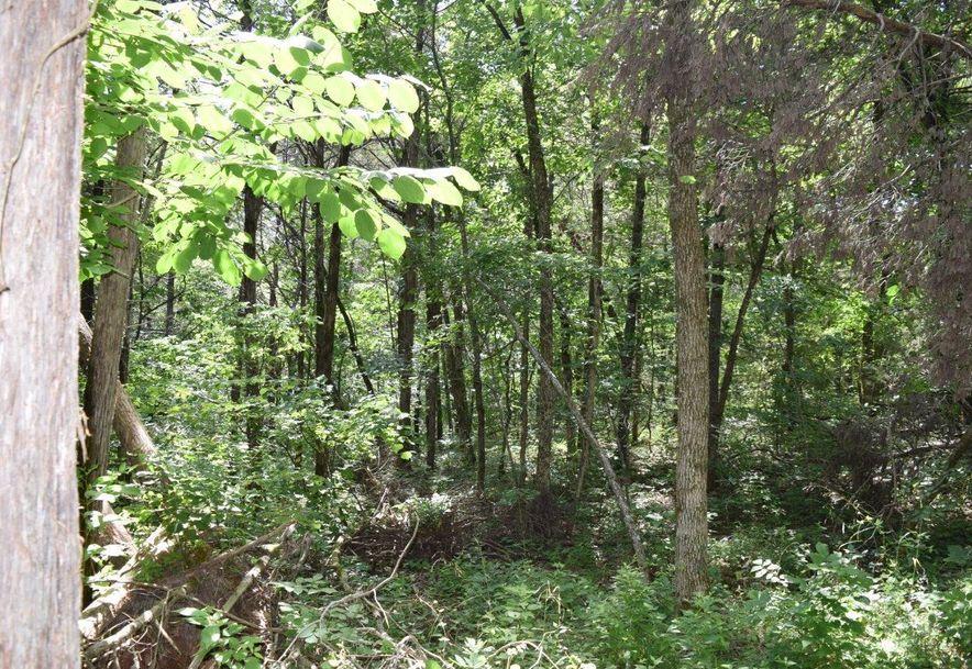 27 Ac Farm Road 2253 Eagle Rock, MO 65641 - Photo 5