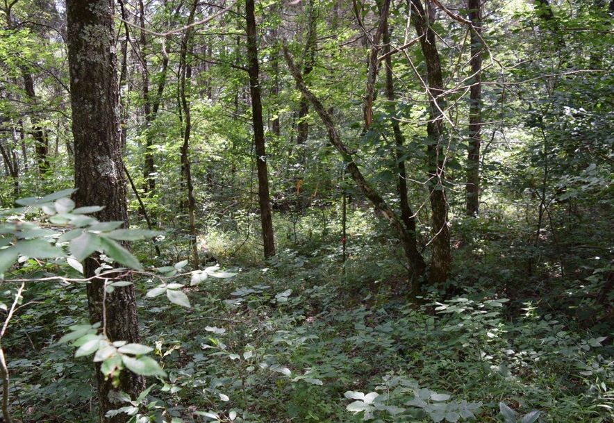 27 Ac Farm Road 2253 Eagle Rock, MO 65641 - Photo 7